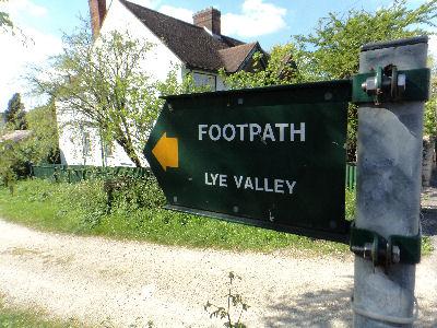 Lye Valley 1