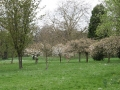 Headington Hill Park-View