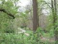 View into Headington Hill Park