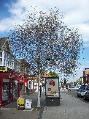 London Road Shops