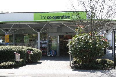 Shop-The Coop