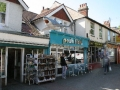 Another Shark
